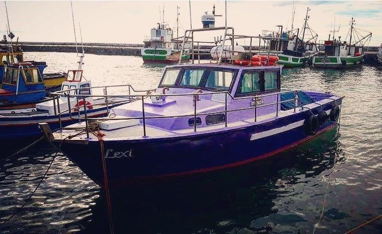 Daily Fishing Trips from  Harbour