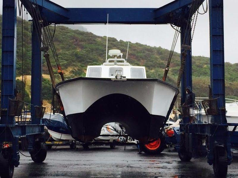 32ft GeCat Commercial Boat