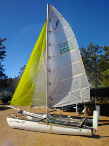 Mosquito Catamaran Good condition ready to race